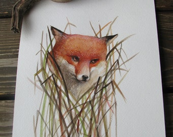 Fox illustration-original fox painting- original watercolor illustration-kids art-original fox illustration-fox illustration