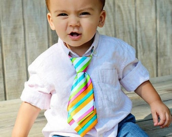 Boys Cake Smash Photo Prop Necktie Neck Tie Ages NB to 3 years Rainbow Bright Colors 1st Birthday Nb Pictures Baby Boy Fabric Tie
