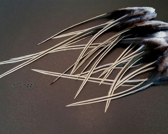 Craft Feathers Hair Supplies Crafts Feather Hair Accessories Golden Badger Real Feathers Craft Supply Qty12