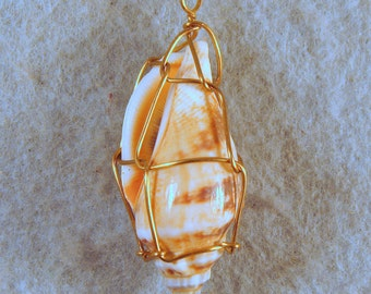 Seashell Wire Wrapped Pendant