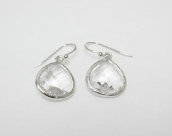 Glass Framed Earrings