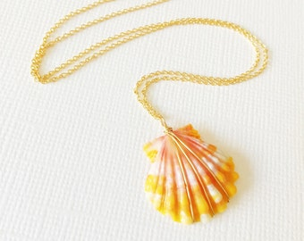 Orange sunrise shell necklace - tiger stripes sunrise shell - sunrise shell necklace - shell necklace (N177)
