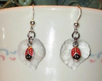 Lady Bug and Leaf Earrings Set