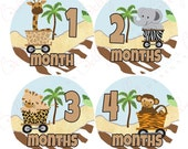 Boy Monthly Baby Stickers, 1 to 12 Months, Monthly Stickers, Baby Age Stickers, Safari Train