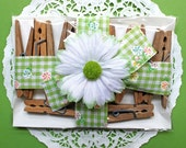 Country Fresh Weathered Clothespins*1 Dozen Vintage Spring Tension Wood Clothespins