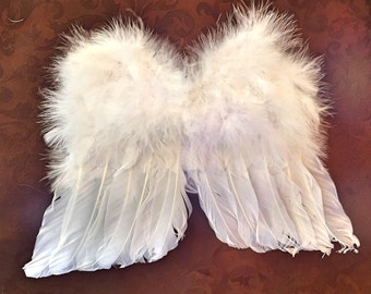 Feather Wings-Available in Multiple Colors-All Sizes