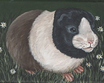 Tricolour Guinea Pig - Acrylic on Stretched Canvas - SALE
