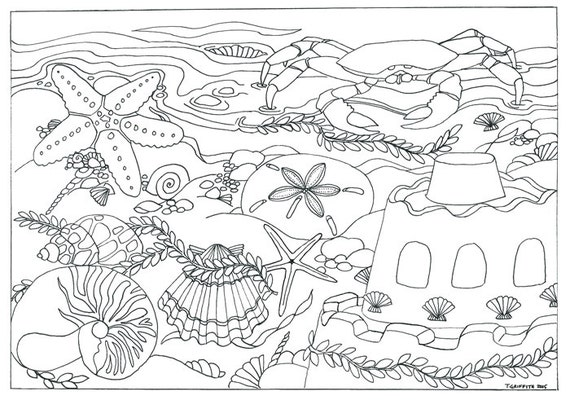 Items similar to Printable Beach Seashells Scene Coloring Page