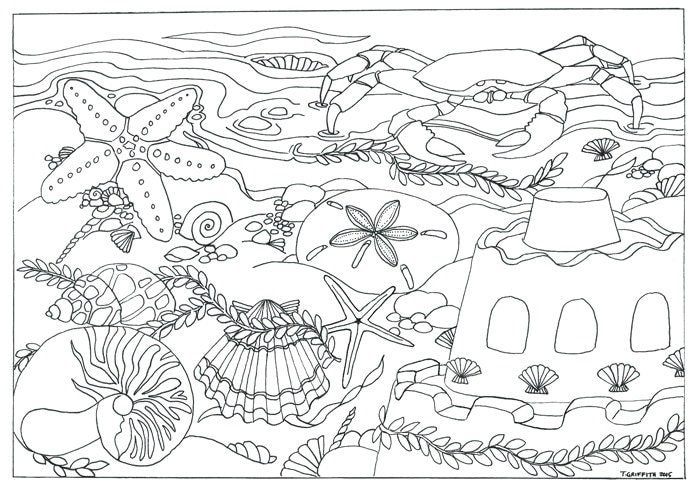 Beach Amp Seashells Scene Coloring Page By TriciaGriffithArts