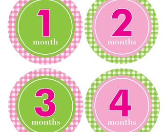 Monthly Onesie Stickers, Baby Shower or Baby Gift, BABY GIRL, 1-12 months, Pink & Green Gingham-EMMA