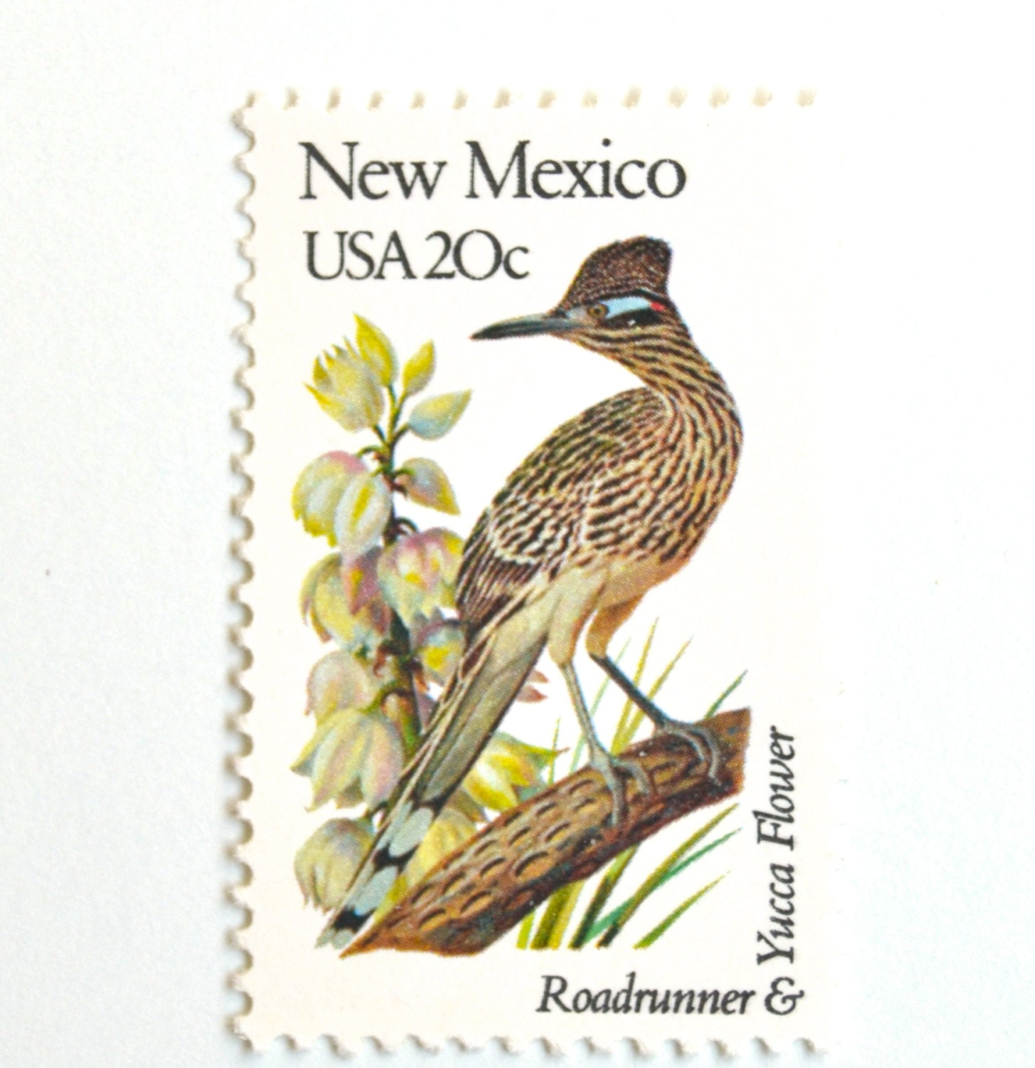 10 Unused New Mexico Vintage Postage Stamps Roadrunner