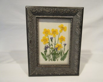 Pressed wildflowers in antique style frame