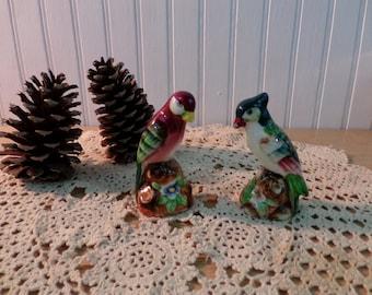Vintage Parrots Salt and Pepper Shakers