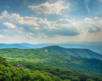 View of the Blue Ridge Mountains from Stony Man Mountain, Shenandoah National Park, Virginia - Photography Fine Art Print or Wrapped Canvas