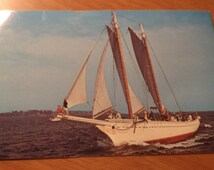 Vintage Original Windjammer Mary Day Along The Maine Coast Postcard Free Shipping