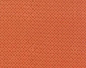 Half Yard - 1/2 Yard - Scallops Coral - NECO by MOMO for Moda