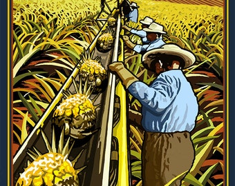Hawaii Pineapple Harvest (Art Prints available in multiple sizes)