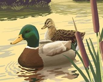 Mallard Ducks (Art Prints available in multiple sizes)