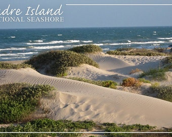 Padre Island National Seashore - Beach (Art Prints available in multiple sizes)
