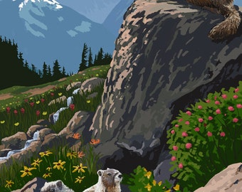 Olympic National Park - Marmots (Art Prints available in multiple sizes)