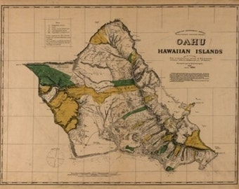 Oahu, Hawaii Panoramic Map - 1881 (Art Prints available in multiple sizes)