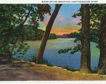 Georgia - Scenic View on the Chattahoochee River (Art Prints available in multiple sizes)