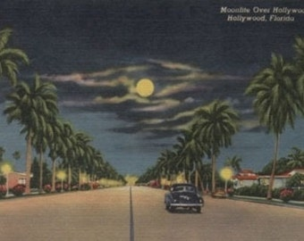 Hollywood, FL - Moonlight View over Hollywood Blvd. (Art Prints available in multiple sizes)