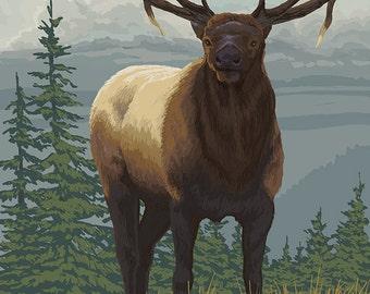 Banff, Alberta, Canada - Elk (Art Prints available in multiple sizes)