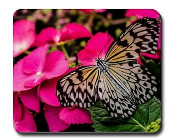 butterfly on pink flower Photography mouse pad