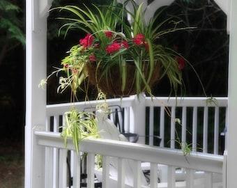Bright Flower Basket Hangs From White Gazebo