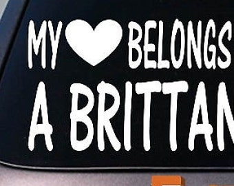My Heart Belongs To A Brittany Sticker Decal *D963*