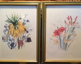 PAIR of BOTANICAL PRINTS, Professionally Framed, Vintage, Floral, Art, Wood Frames, Spring, Home Decor