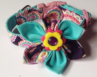 Aqua & Purple Paisley Flower Collar for Dogs and Cats