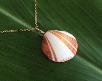 Natural brown and white sea shell necklace