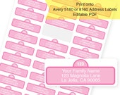 Instant Download -  PINK Sesame Street Address Labels  / Return Address Labels & Recipient Address Labels  / Editable PDF