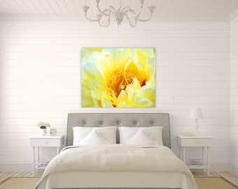 Buttercup ~ Yellow Peony, Canvas, Wall Art, Fine Art Photography, Floral, Home Decor, Yellow, Flower, Rhode Island, Joules, Artwork, Photo