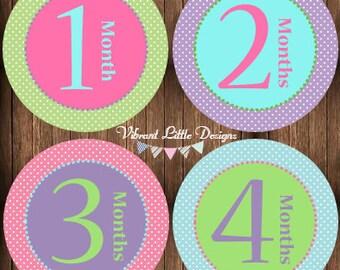 Baby Girl Monthly Stickers, Milestone Stickers, Month Stickers, Baby Month Stickers, Baby Stickers #55
