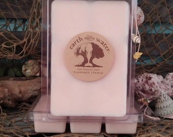 Soy Wax Melts-Flamingo Stance Melts- 6 pack Soy Melts