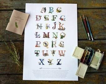 California Alphabet Poster