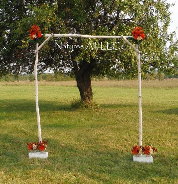Diy Rustic Wedding Arch: Rustic DIY White Birch Wedding Arch/White Birch By
