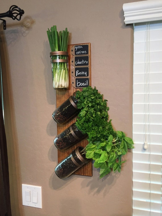 vertical garden indoor herb garden succulent planter mason jar wall