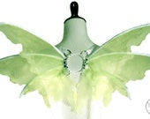 Annora No.22 - Small Fairy Wings in Lime Green and White