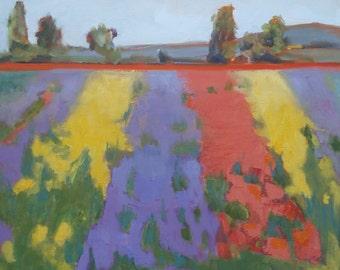Landscape Oil Painting//Dahlia Fields// 16 x 16 x 1.5 Gallery Wrap Canvas