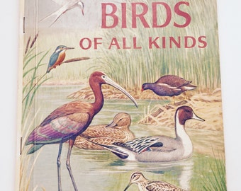 Vintage Children's Book Birds of All Kinds Little Golden Book
