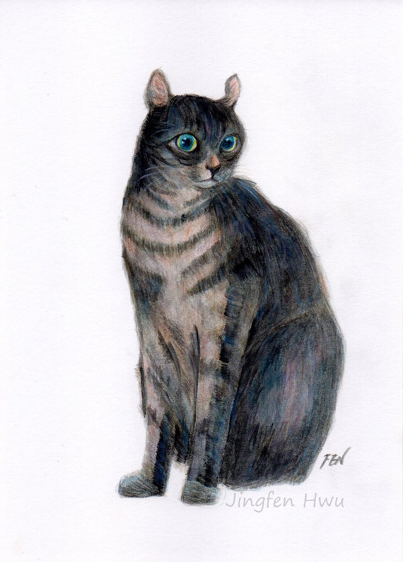 how to draw a black cat with colored pencils