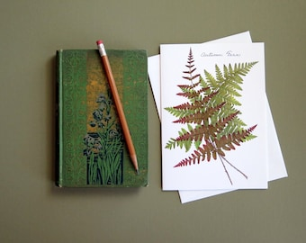 Autumn Fern, pressed ferns, fall, rust, green, greeting card no.1199
