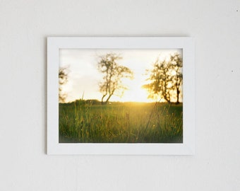 SEPTEMBER LIGHT No. 1 | fine art photo print