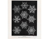 1900 SNOW FLAKE CRYSTAL print original antique winter weather science lithograph