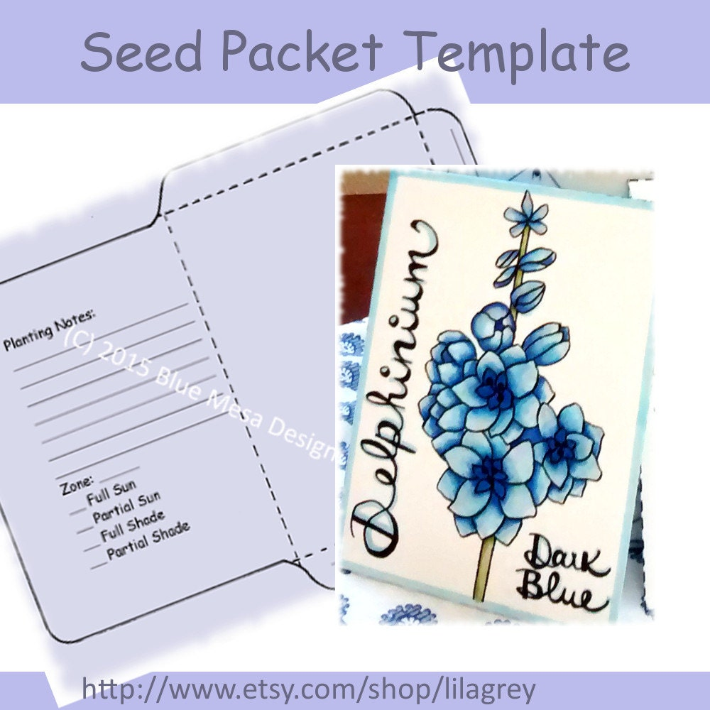 Seed packet template blue delphinium flower hand lettering for Blank seed packet template