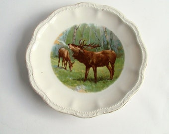 Decorative Antique Plate, Stag and Deer, Transfer Print, Woodland Picture, Deer in Woods, Buck and Doe, Elk Image